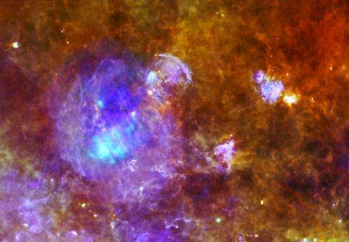 Life and death in a star-forming cloud