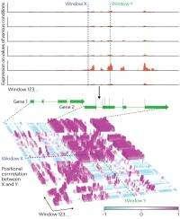 Making sense of molecular fragments