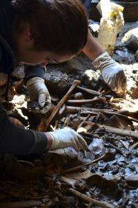 Mexico finds 100s of bones in unusual Aztec burial
