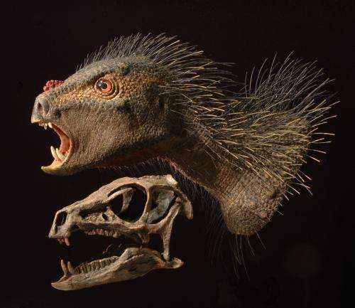 New fanged dwarf dinosaur from southern Africa, ate plants