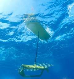 Revolutionary tool will methodically track ocean populations