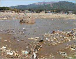 Science to help rice growers affected by Japan's tsunami