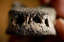 Scientists crack medieval bone code