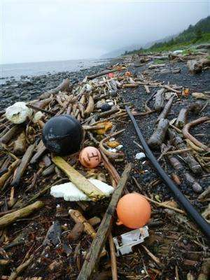 US West Coast ready for more Japan tsunami debris