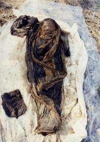16th-century Korean mummy provides clue to hepatitis B virus genetic code