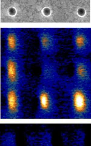 New method for imaging defects in magnetic nanodevices