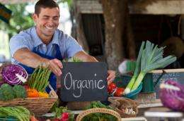 Shedding light on debate over organic vs. conventional agriculture: Study calls for combining best of both approaches