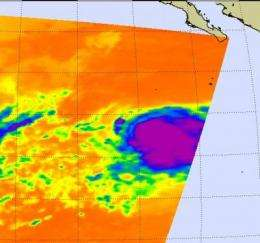 NASA sees Tropical Storm Rosa being born and powering up quickly