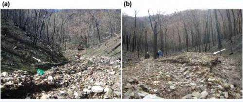 Forest soil erosion in the wake of major bushfires