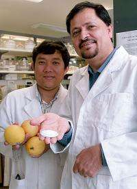 New technology to revolutionise fresh fruit industry