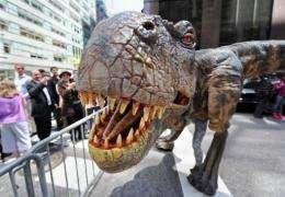 A baby Tyrannosaurus Rex shows its teeth