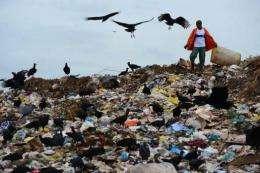 A 'catadore' (scavenger) digs through rubbish at the Jardim Gramacho landfill