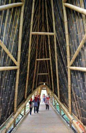 A chocolate factory is the latest building on Bali to be built of bamboo