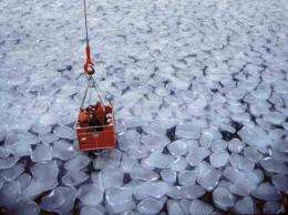 A comprehensive study of ice