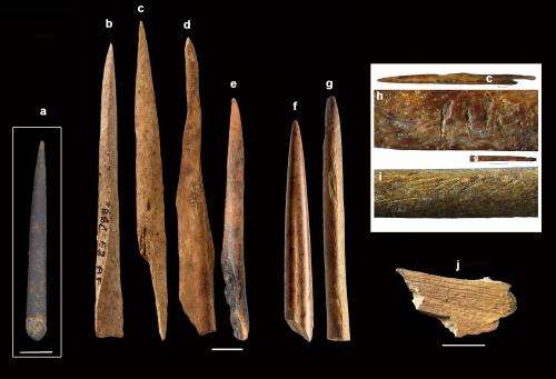 Africa's Homo sapiens were the first techies