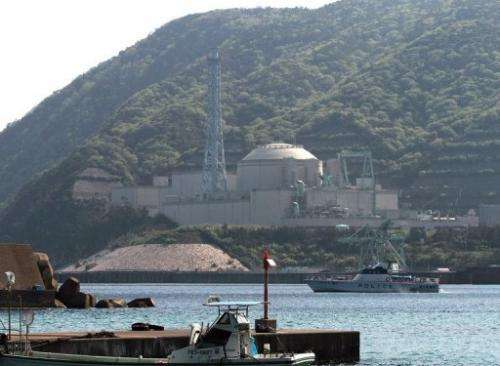 All but two of Japan's nuclear reactors remain offline