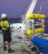 Aquatic robot audits health of seabed