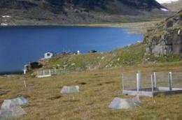 Arctic getting greener
