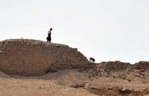 A security guard patrols within the perimeter of the Inca Sanctuary of Pachacamac ruin complex in 2010