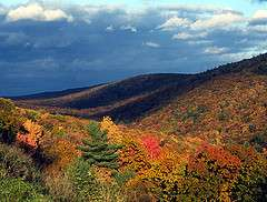 A warm, wet fall would dampen foliage colors