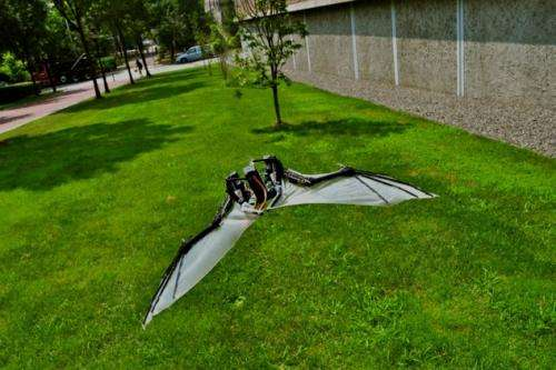 BaTboT is up for imitating smart bat maneuvers