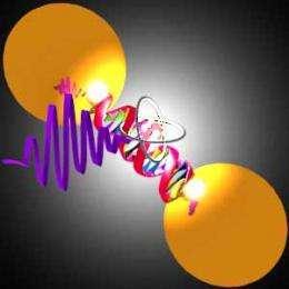 Bio-inspired nanoantennas for light emission