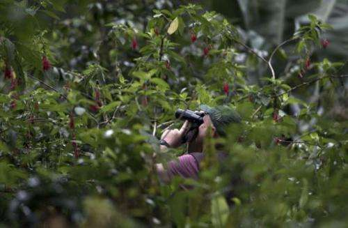 Birdwatchers take part in the Birding Rally Challenge near the Machu Picchu sanctuary in Cuzco on December 5, 2012