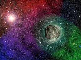 Black holes as particle detectors