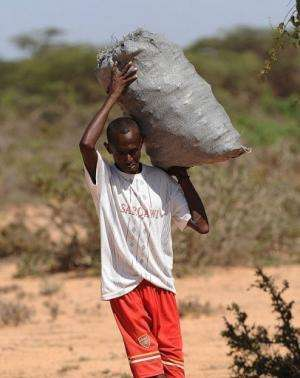 Charcoal is the main source of energy, as electricity is rare and expensive for many in Somalia