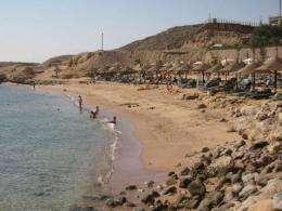 Egypt's Sharm el-Sheikh recorded shark attacks in 2010