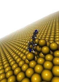 First single-molecule measurement of Van Der Waals interactions at metal-organic interface
