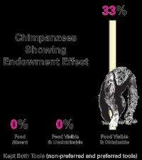 Research shows endowment effect in chimpanzees can be turned on and off