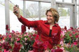 Greenhouse workers showcase soil and light