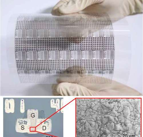 Group develops carbon nanotube based flexible display using flexographic printing technology