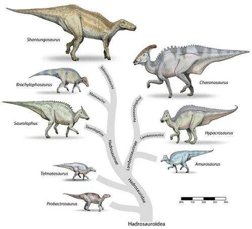 Hadrosauroidea