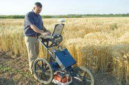 High-tech tools may help small grains breeders 'see' valuable plant traits faster