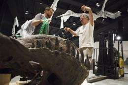 Houston museum unveils $85 million dinosaur hall (AP)