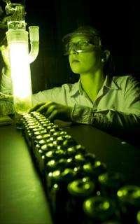 Hydrogen peroxide goes green in undergrad's published paper on renewable energy