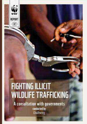 Illegal wildlife trade threatens national security, says report