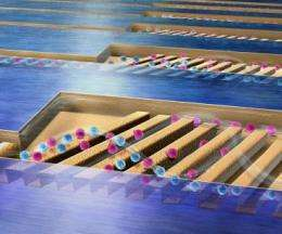 In a new microchip, cells separate by rolling away