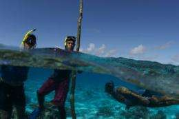 In Fiji, marine protection gets local boost