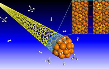 In nanotube growth, errors are not an option