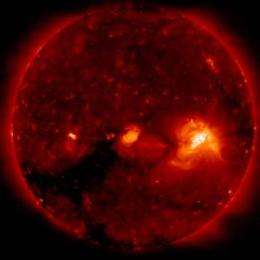 Loopholes discovered in Sun's magnetic belt