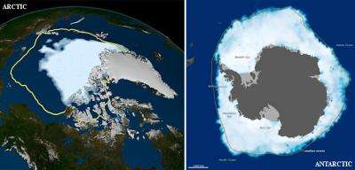 Opposite behaviors? Arctic sea ice shrinks, Antarctic grows