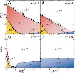 Copper fields: Quantum criticality in high-temperature cuprate superconductors