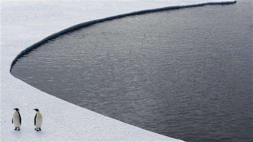 Plans for giant Antarctic marine sanctuary falter