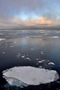 Predicting arctic sea ice loss