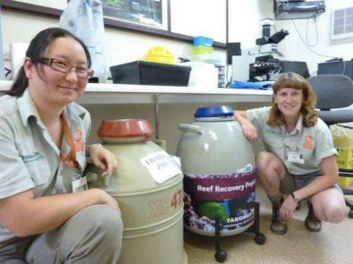 Reproductive biologists Nana Satake and Tamara Keeley with the 'Frozen Zoo' and 'Reef Recovery Project' chambers