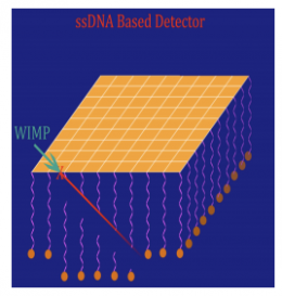 Researchers propose gold and DNA based dark matter detector