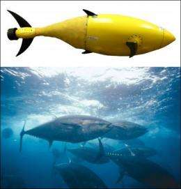 Robotic tuna is built by Homeland Security